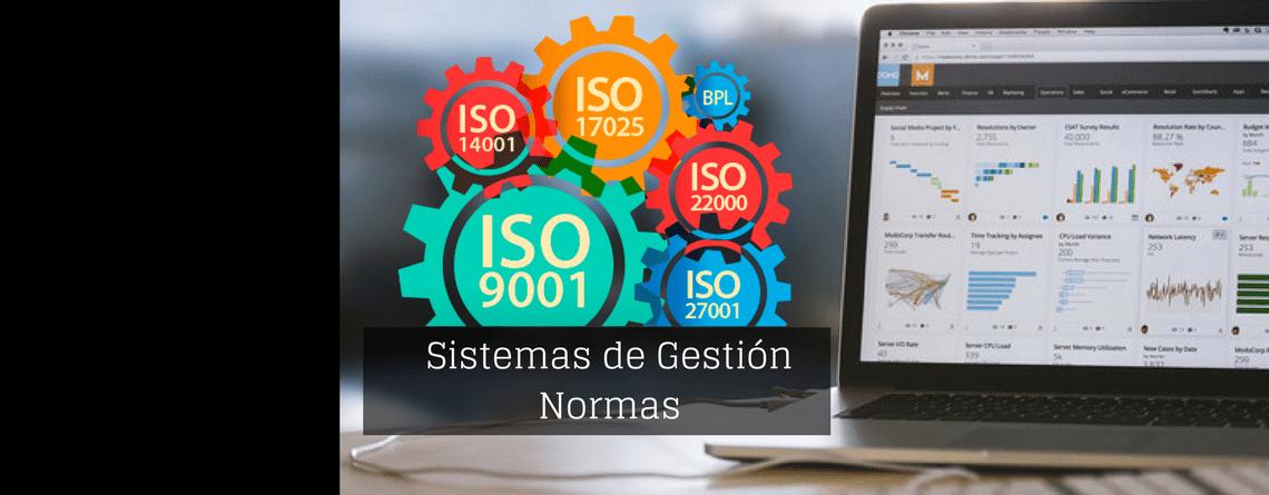 Diseño e Implantación de Sistemas de Gestión (ISO 9000, ISO 14000, OHSAS 18000, ISO/TS 16949)