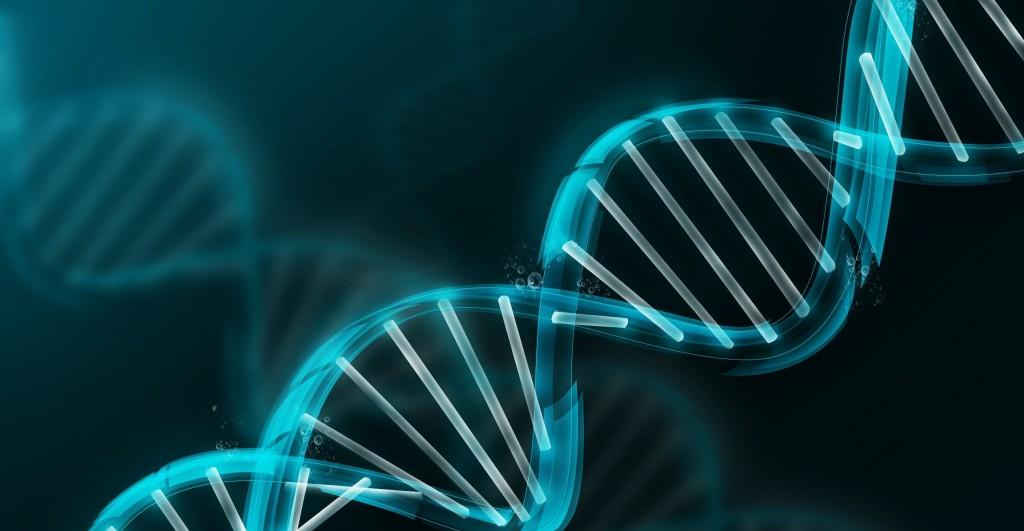 ADN empres